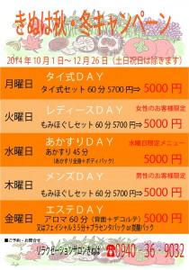 きぬは秋・冬のキャンペーン2014年【A4】