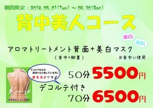 背中美人コース【A4】