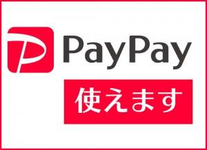 paypayWP