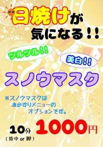 スノウマスク_あかすりOP【A4】