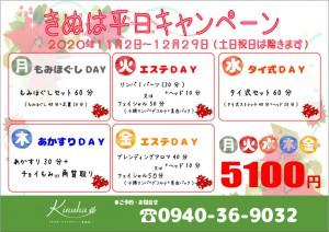 きぬは平日キャンペーン2020011-12【A4】
