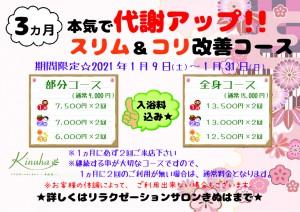 3ヵ月本気で代謝アップ!スリム&コリ改善コース【A4】