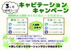 キャビテーションキャンペーン【A4】